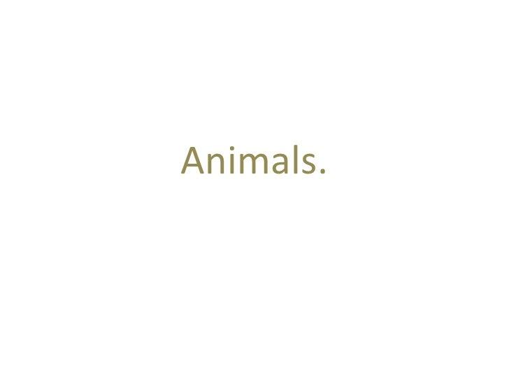 Animals.<br />