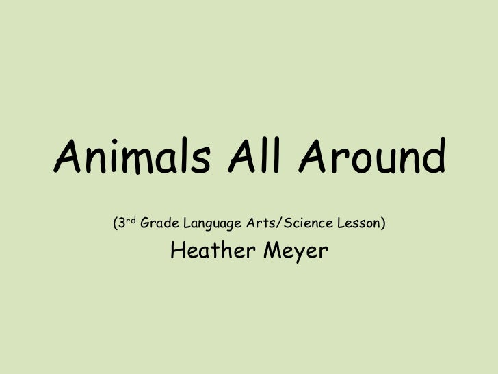 Animals All Around<br />(3rd Grade Language Arts/Science Lesson)<br />Heather Meyer<br />
