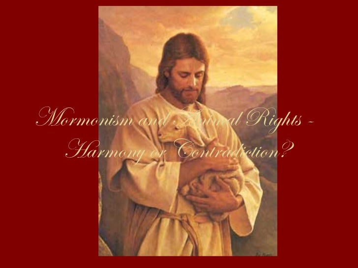 Mormonism and Animal Rights -  Harmony or Contradiction?