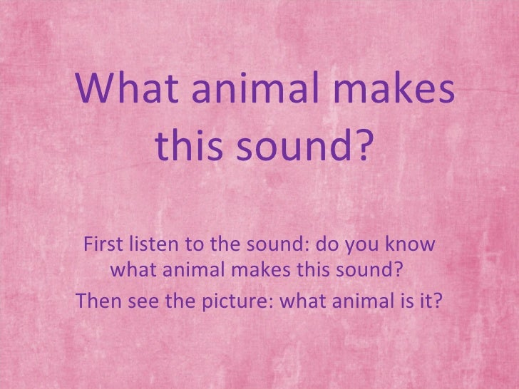 What animal makes this sound? First listen to the sound: do you know what animal makes this sound?  Then see the picture: ...