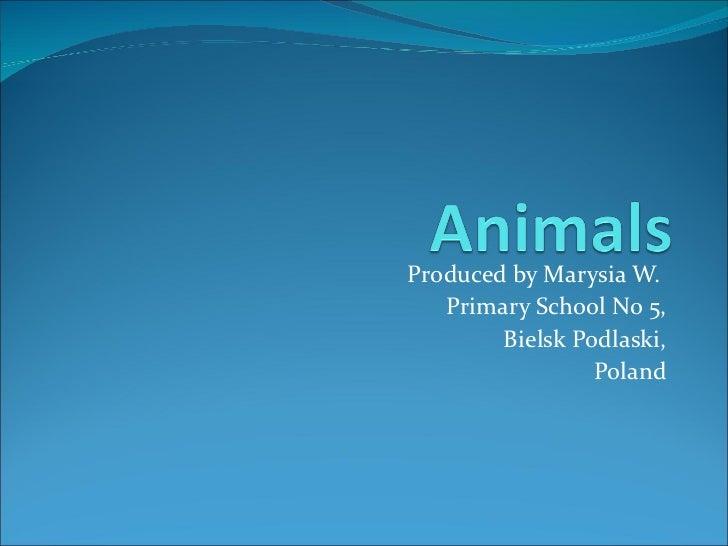 Produced by Marysia W.   Primary School No 5,        Bielsk Podlaski,                 Poland