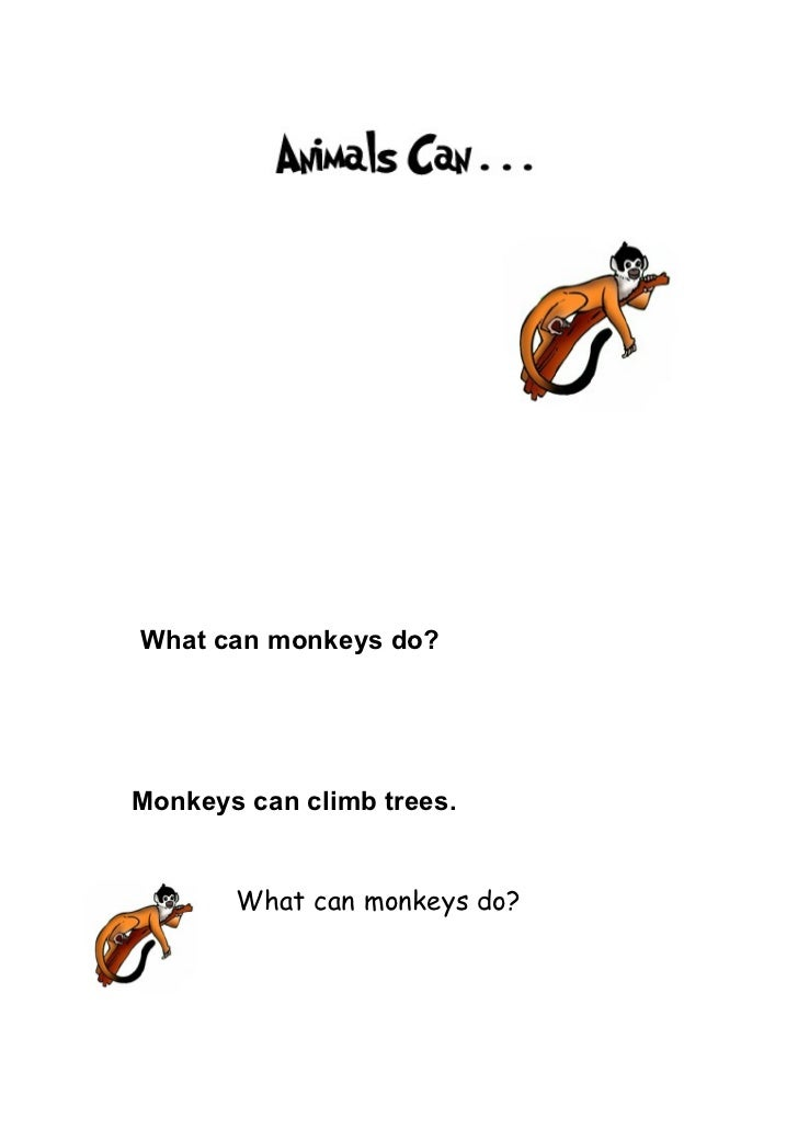 What can monkeys do?Monkeys can climb trees.       What can monkeys do?