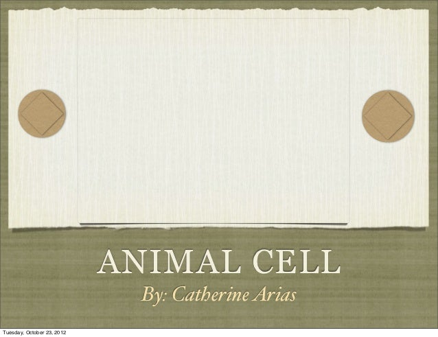 ANIMAL CELL                             By: Catherine AriasTuesday, October 23, 2012