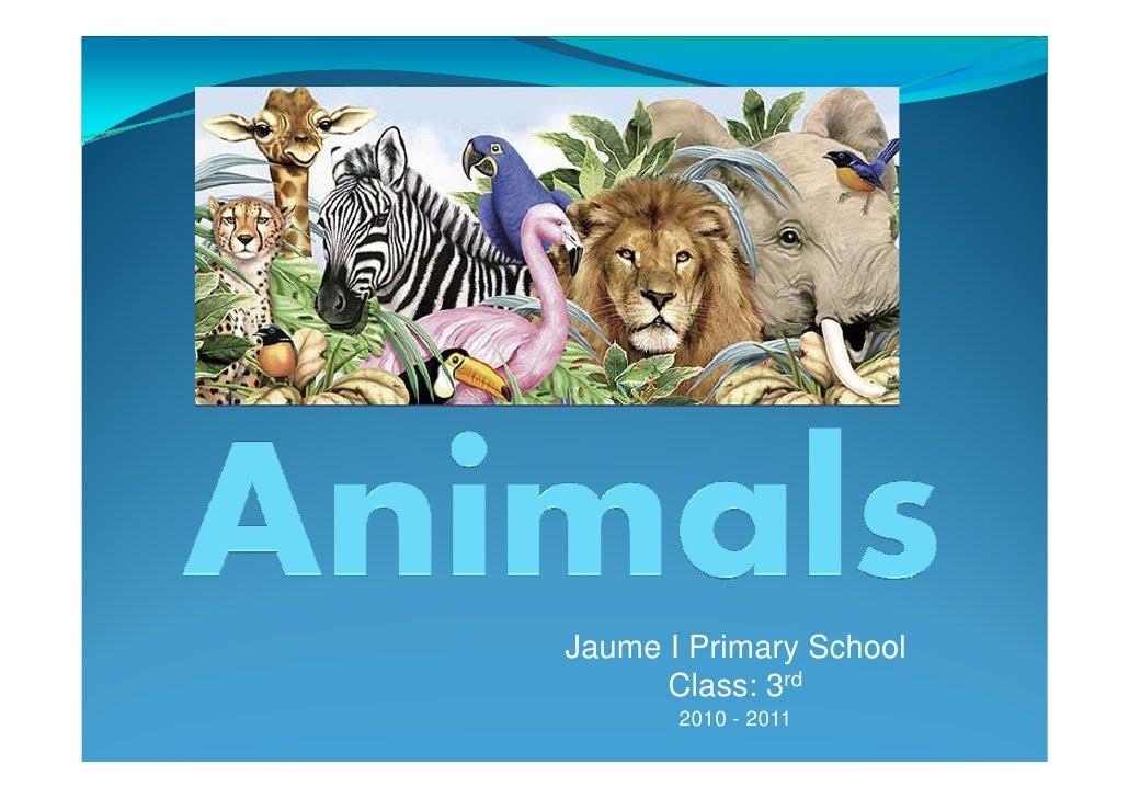 Animals descriptions  pp