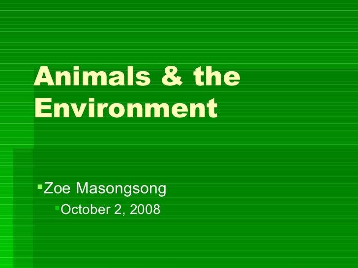 Animals & the Environment <ul><li>Zoe Masongsong  </li></ul><ul><ul><li>October 2, 2008  </li></ul></ul>