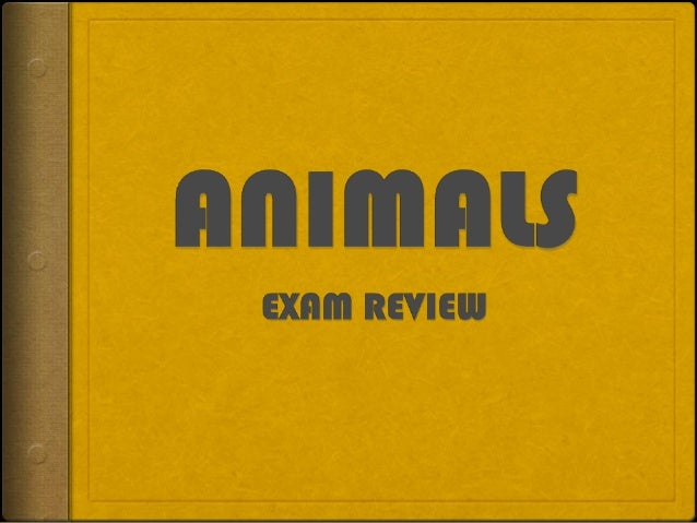 ANIMALS CLASSIFICATION  Animals are classified according to different characteristics:       What they eat: carnivor...
