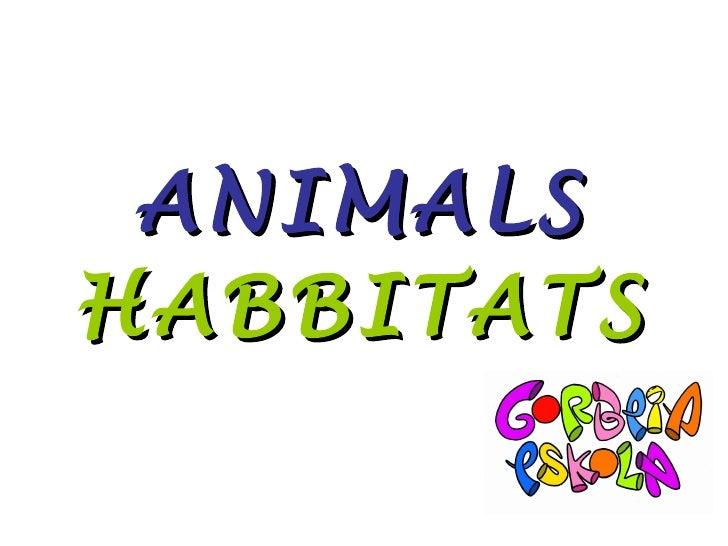 ANIMALS   HABBITATS