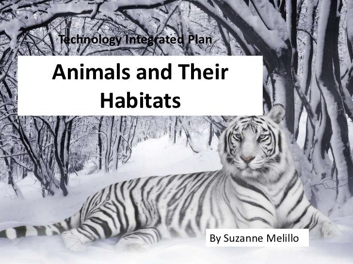 Technology Integrated Plan<br />Animals and Their Habitats<br />By Suzanne Melillo<br />