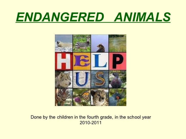 ENDANGERED  ANIMALS Done by the children in the fourth grade, in the school year 2010-2011