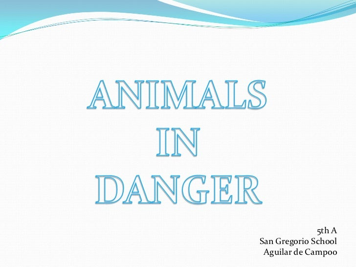 ANIMALS <br />IN <br />DANGER<br />5th A<br />San Gregorio School<br />Aguilar de Campoo <br />