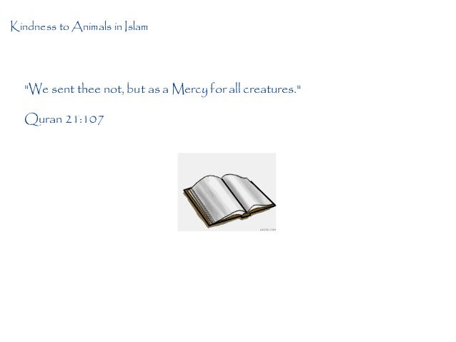Treatment of Animals in Islam