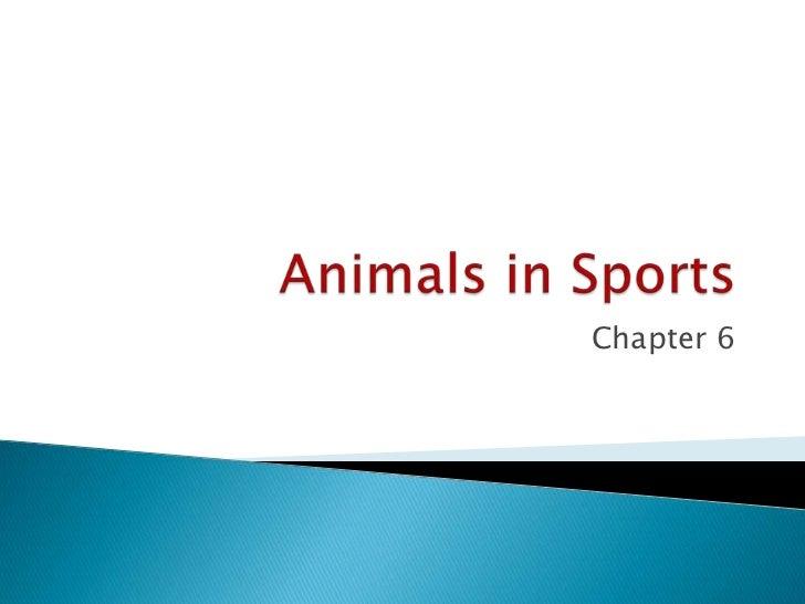 Animals in Sports