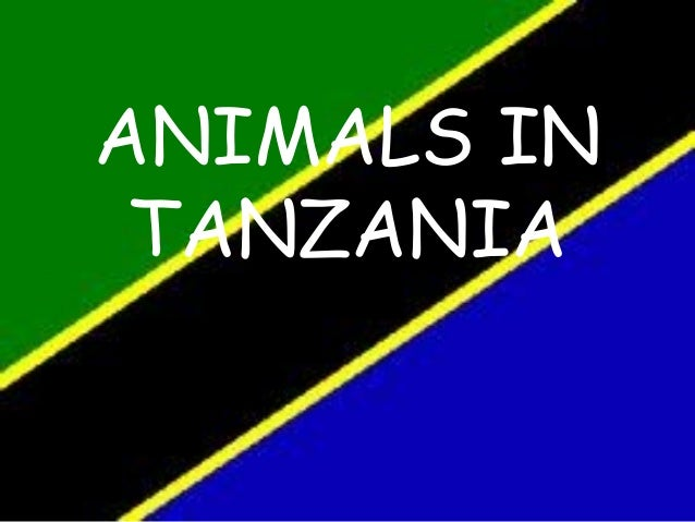 Animals in tanzania alba power point
