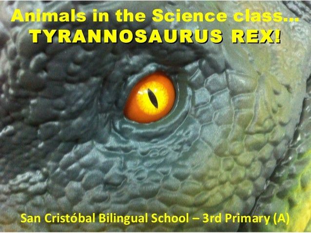 Animals in the science class