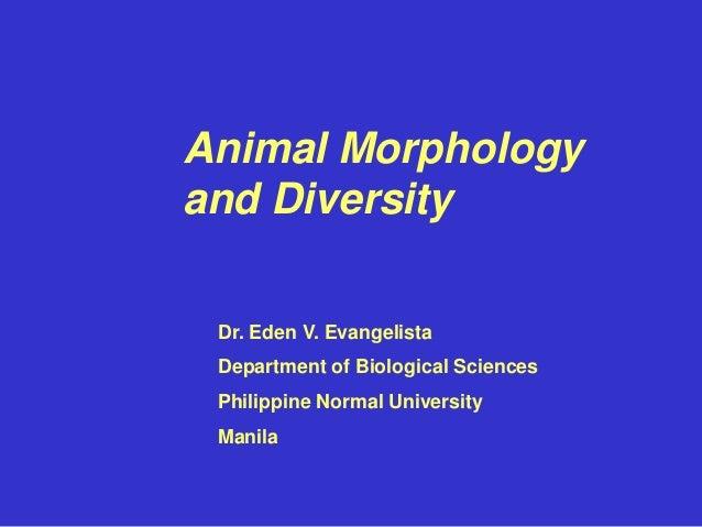 Animal Morphology and Diversity Dr. Eden V. Evangelista Department of Biological Sciences Philippine Normal University Man...