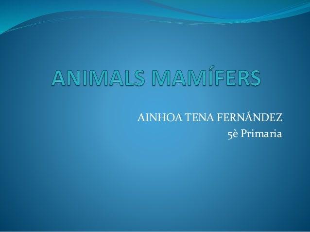 AINHOA TENA FERNÁNDEZ 5è Primaria