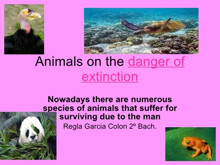 What animals are extinct?