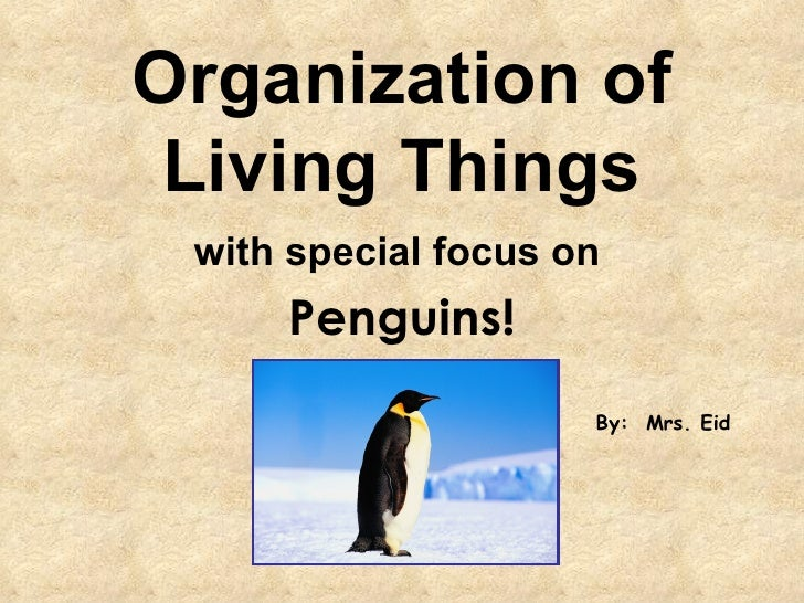 Organization of Living Things with special focus on   Penguins! By:  Mrs. Eid