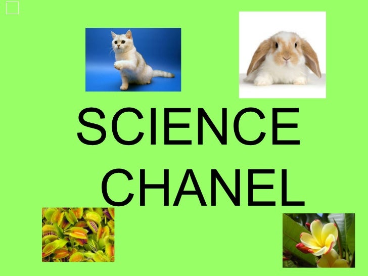 SCIENCE  CHANEL