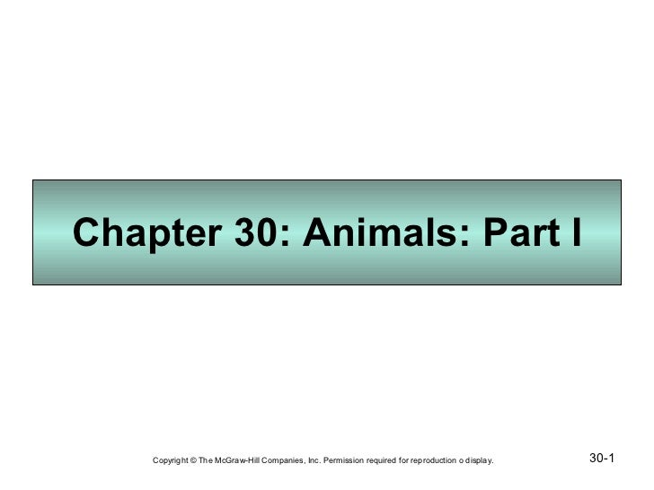 Chapter 30: Animals: Part I 30- Copyright © The McGraw-Hill Companies, Inc. Permission required for reproduction o display.