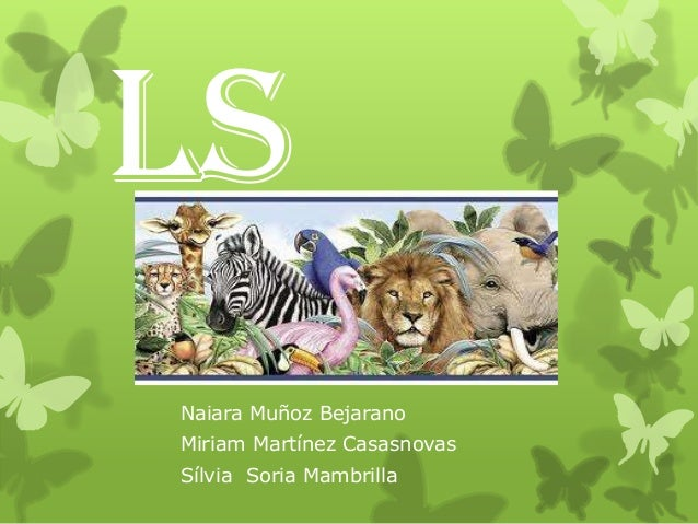 Animals tecno pp2