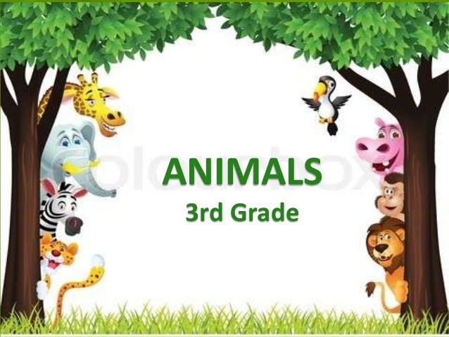 ANIMALS 3rd Grade