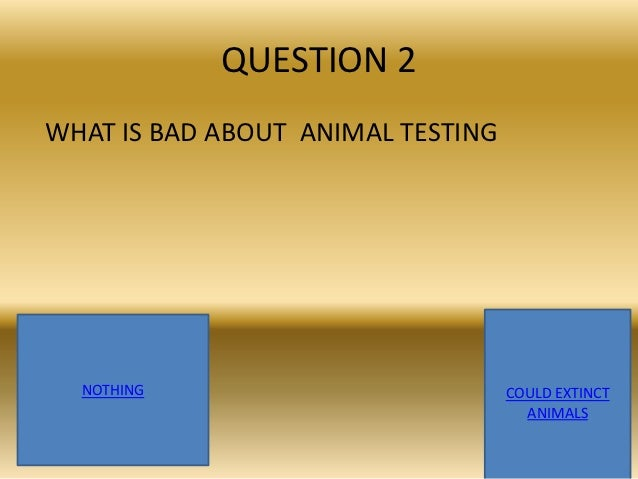 Animal testing question?
