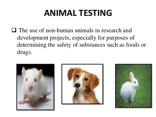 the good and bad of human testing and animal testing Frequently asked questions about animal experimentation issues 1 what concerns are raised by the use of animals for medical and scientific experiments.