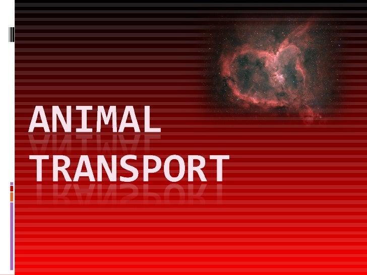 Animal Transport Complete