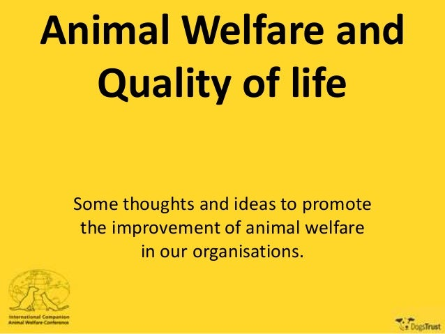 Animal Welfare and Quality of life Some thoughts and ideas to promote the improvement of animal welfare in our organisatio...