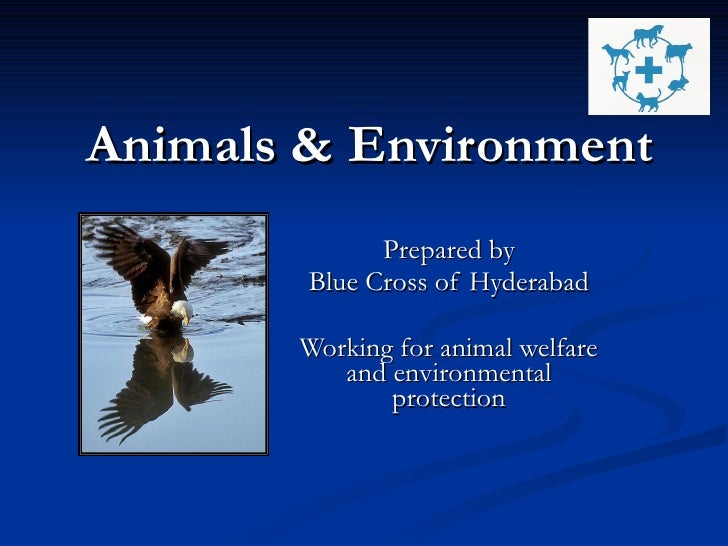 Animals & Environment Prepared by Blue Cross of Hyderabad Working for animal welfare and environmental protection