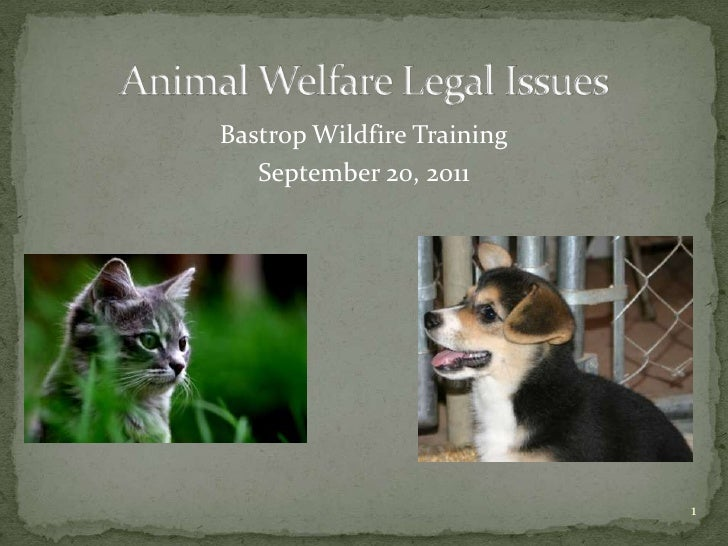 Animal Welfare Legal Issues<br />Bastrop Wildfire Training<br />September 20, 2011<br />1<br />