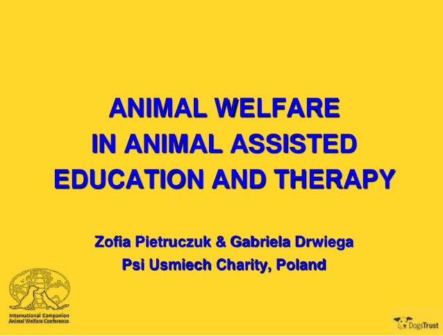 ANIMAL WELFARE IN ANIMAL ASSISTED EDUCATION AND THERAPY Zofia Pietruczuk & Gabriela Drwiega Psi Usmiech Charity, Poland