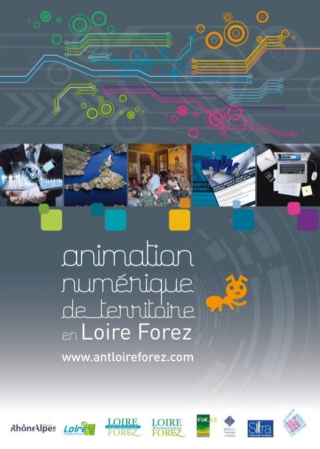 Animation numérique de territoire en Loire Forez - 2012