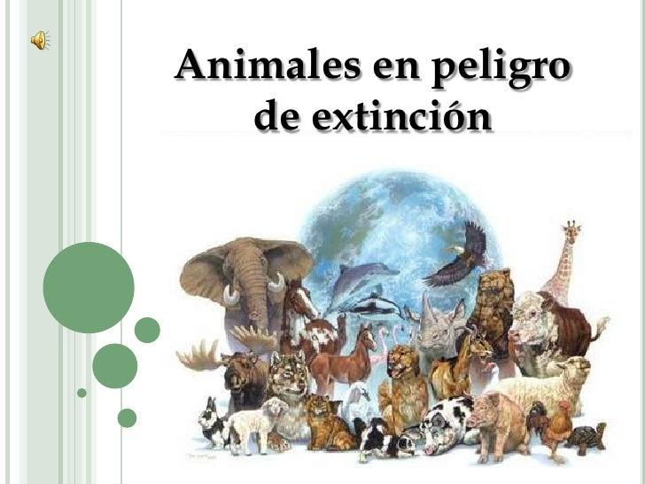 Animales en peligro de extinción<br />