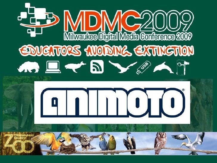 Animoto Setup