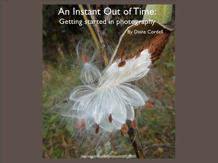 An Instant Out of Time: Getting started in photography                                               By Diane Cordell     ...