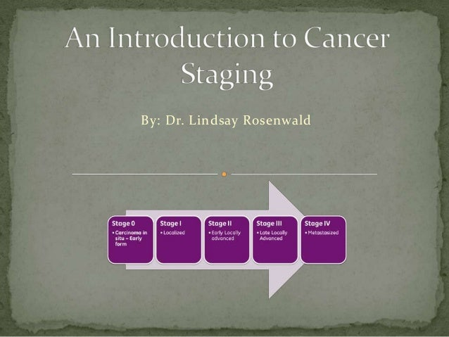 By: Dr. Lindsay Rosenwald