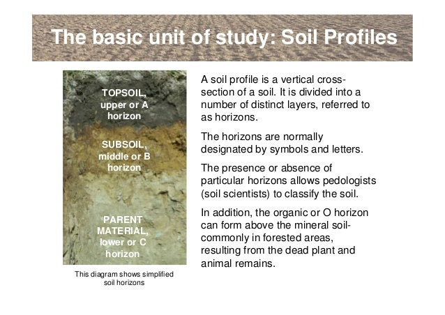 An introduction to soils soil formation and terminology for Introduction of soil