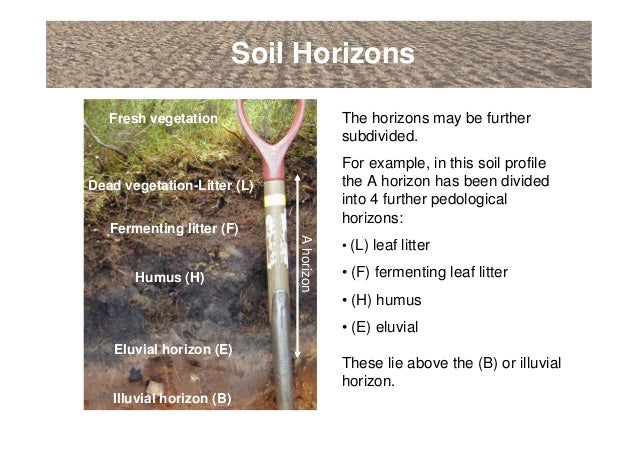 An introduction to soils soil formation and terminology for Soil 4 youth