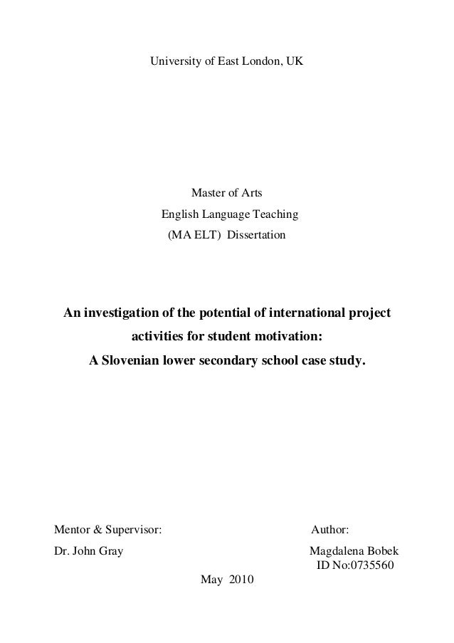 An investigation of the potential of international project activities for student motivation