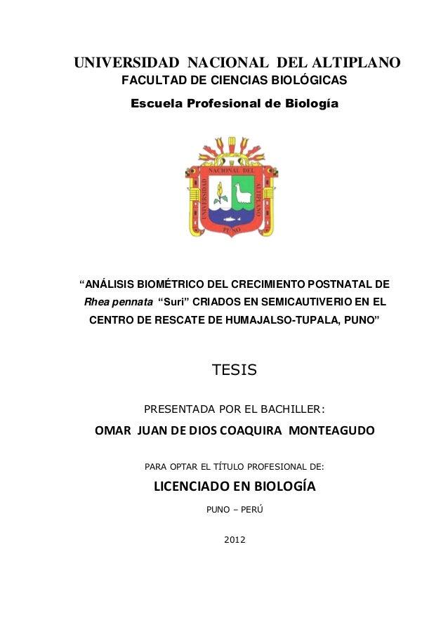 """2 UNIVERSIDAD NACIONAL DEL ALTIPLANO FACULTAD DE CIENCIAS BIOLÓGICAS Escuela Profesional de Biología """"ANÁLISIS BIOMÉTRICO ..."""