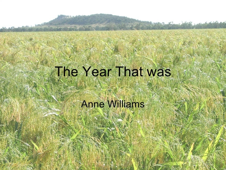 The Year That was Anne Williams