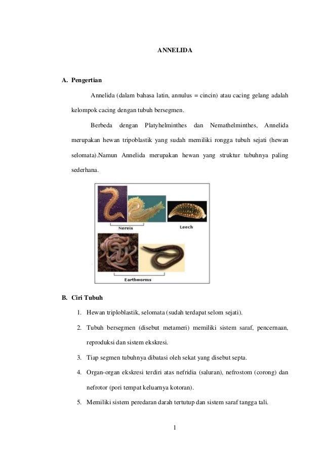 1 ANNELIDA A. Pengertian Annelida (dalam bahasa latin, annulus = cincin) atau cacing gelang adalah kelompok cacing dengan ...