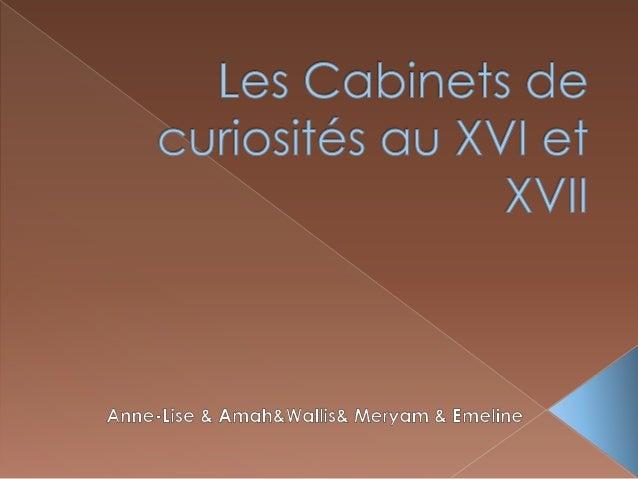  Les cabines de curiosités au XVI et XVII étaient un lieu ou étaient présentés de nombreux objets rares et divers.