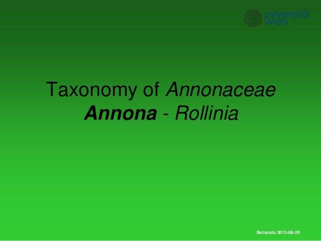 Taxonomy of Annonaceae Annona - Rollinia Botucatu 2013-08-20