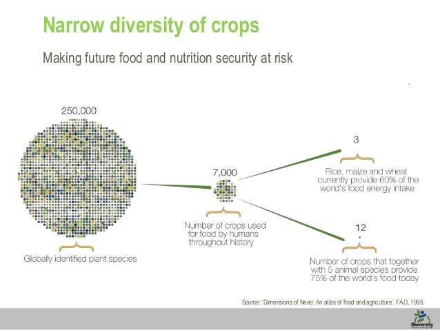 Narrow diversity of crops Making future food and nutrition security at risk  Source: 'Dimensions of Need: An atlas of food...