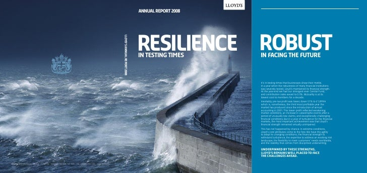 annual report 2008     resilience in testing times