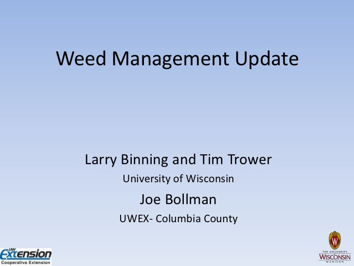 Annual weed management