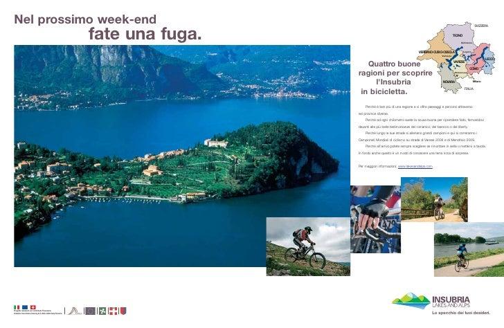 Annunci Insubria Bike